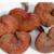 Reishi, Lingzhi a Lesklokorka lesklá - jedna houba vládne všem