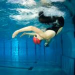 Od neplavce kvýkonnostnímu tréninku