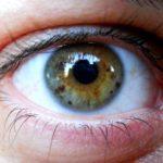 5 potravin pro váš lepší zrak